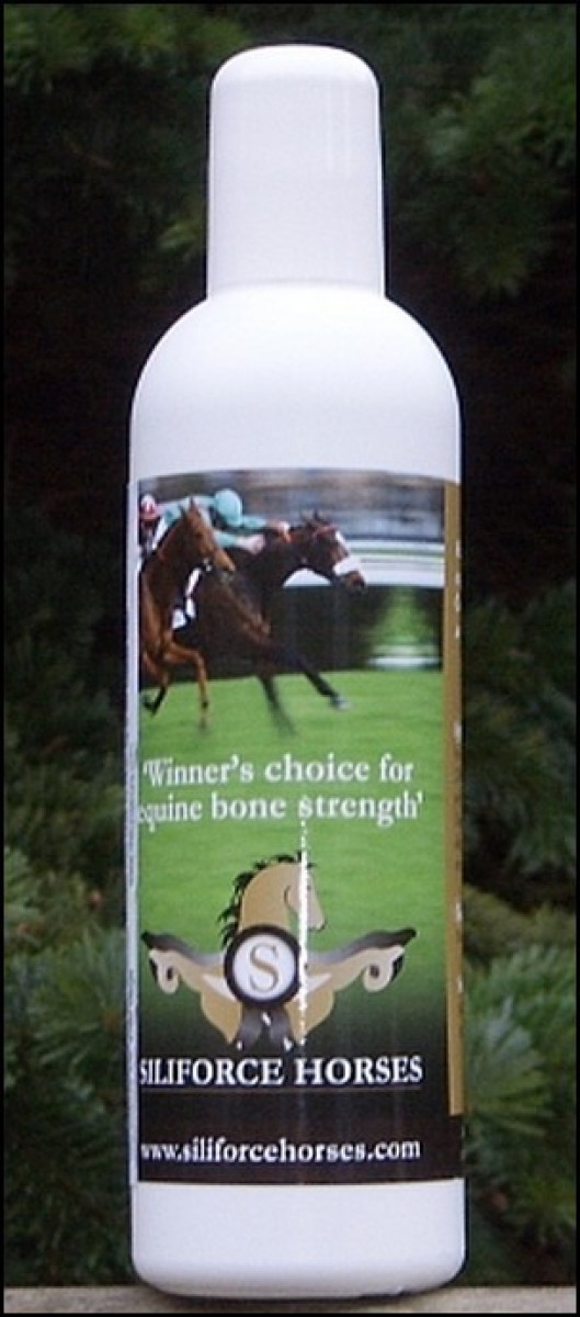 Siliforce Horses (ledbrusk og knogler) 250 ml